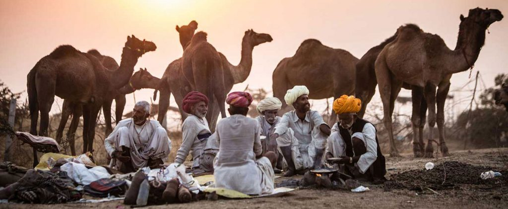 Pushkar Camel Mela Fair
